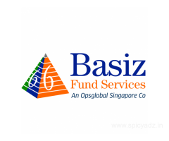 Basiz Fund Services specializes on Hedge Funds