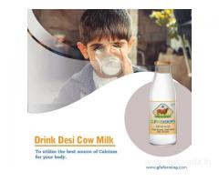 Cow Milk Online in Gurgaon | Gir Cow Milk in Gurgaon | GFO Farming