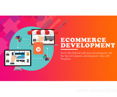 ecommerce development company in New Delhi | ecommerce development Services