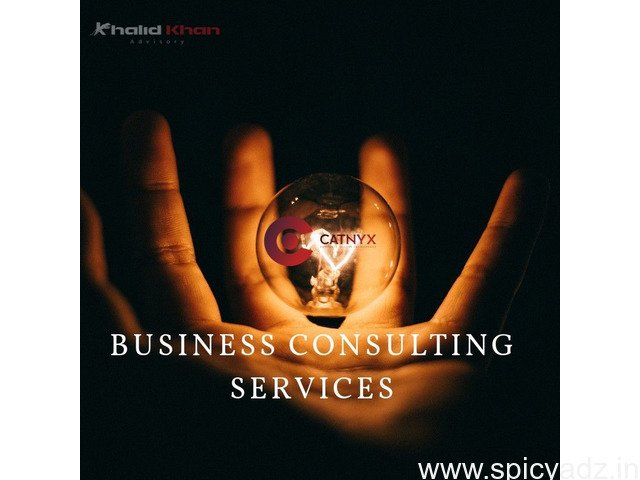 Business Consultancy Services IT Solutions and Marketing Services in Aligarh - 1