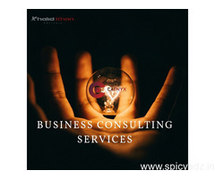 Business Consultancy Services IT Solutions and Marketing Services in Aligarh