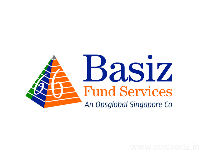 FINANCIAL STATEMENT REPORTING SERVICES | BASIZ - 1