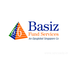 FINANCIAL STATEMENT REPORTING SERVICES | BASIZ