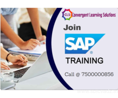 CLS is the Best IT Training Institute in Delhi/NCR
