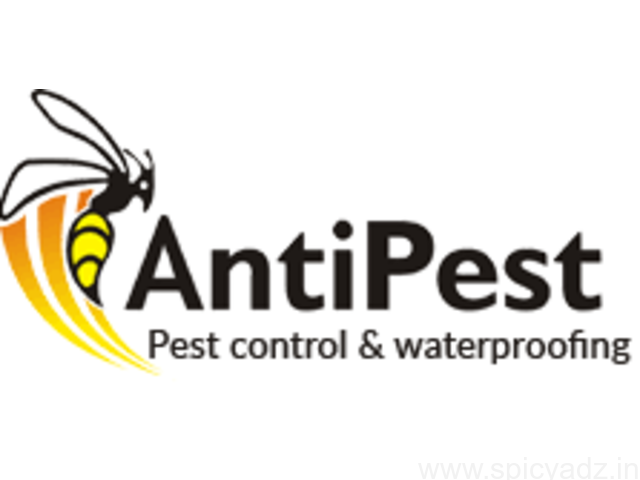 The Most Affordable Pest Control Services in Chandigarh - 1
