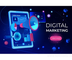 Digital Marketing Services In Aligarh