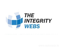The Integrity Webs