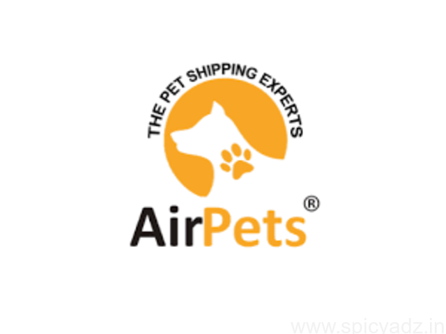 Domestic Pet Transport Services - 1