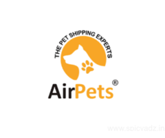 Domestic Pet Transport Services