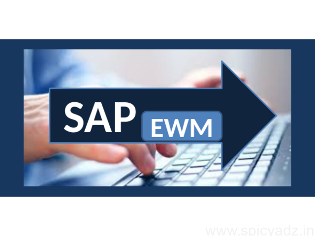 Learn BEST SAP EWM Training by Experienced Trainer - 1