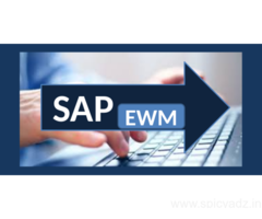 Learn BEST SAP EWM Training by Experienced Trainer