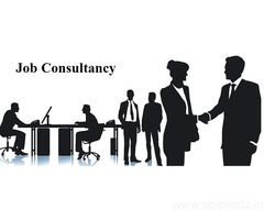 Placement Agency in Agra | Top Job Consultancy in Agra