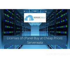 Licenses of cPanel Buy at Cheap Prices: Serverwala