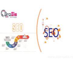 SEO Company In Jaipur- BroSis Technologies