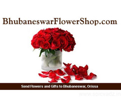 Order Best Birthday Gifts, Cakes & Flowers at Low Cost-Same Day Free Shipping in Bhubaneswar