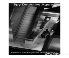 Private Detective Services in Jaipur | Investigation agency in Jaipur