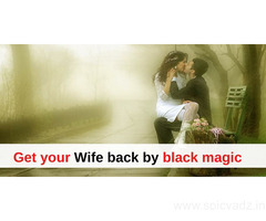Get your Wife back by black magic - Pandit K.K. Sharma