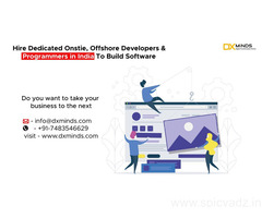 Hire Offshore Developers/Programmers in India For Your Business