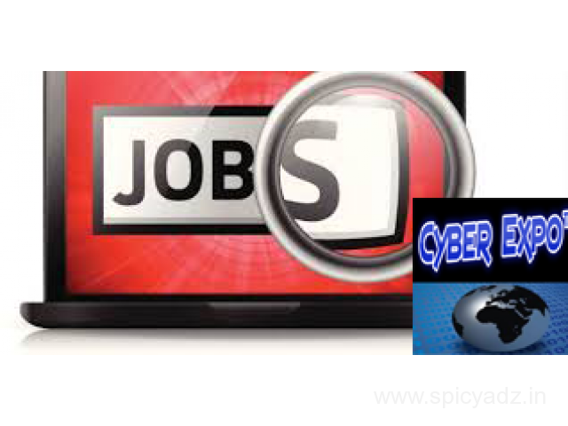 Copy Paste Work At home Jobs – Daily work Daily Payment (ISO Certified) - 1