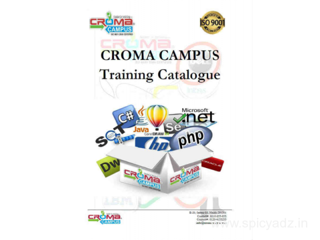 Embedded systems training institutes in noida - 1