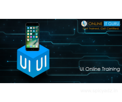 UI Online Training |Enroll Now For a Free DEMO