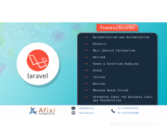 Laravel Development Company, India
